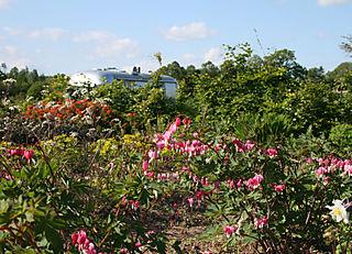 Garden towards airstream