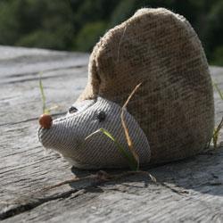 News_hedgehog