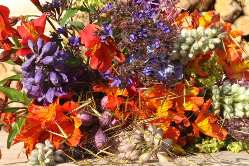 Flowers - ross