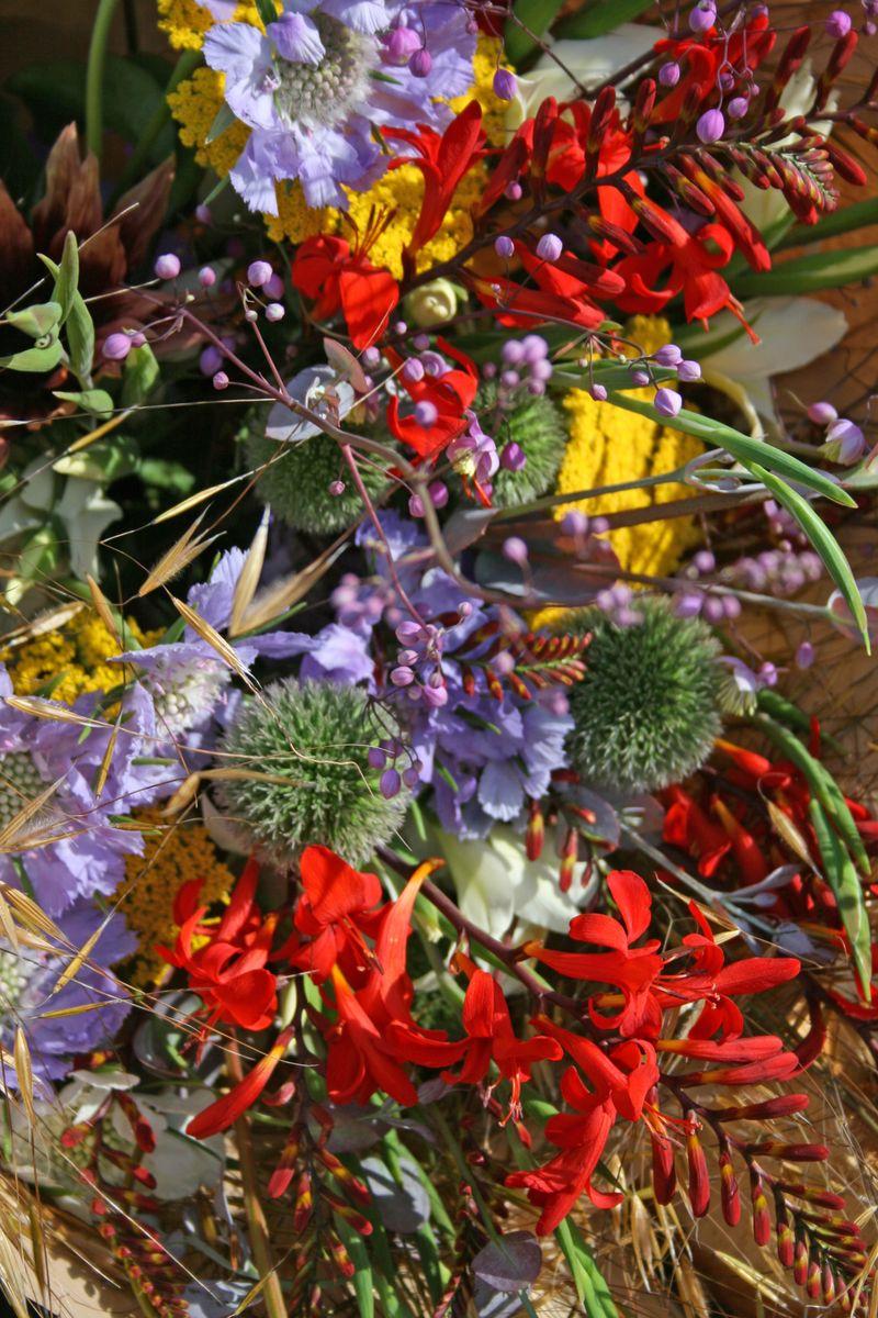 Crocosmia bouquet
