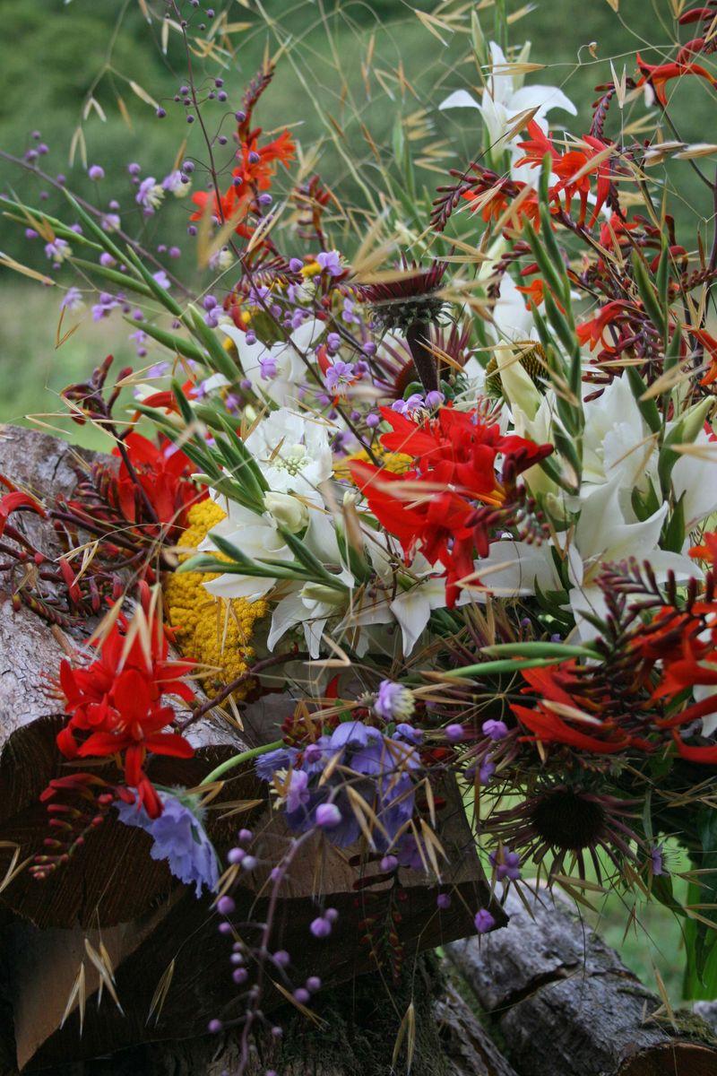 Flora flowers