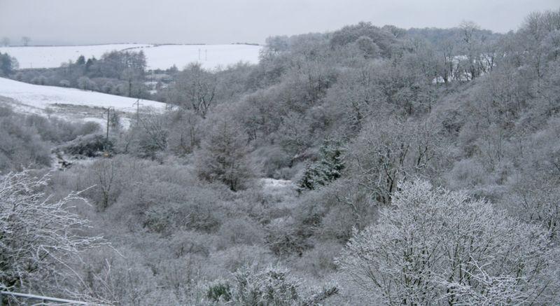 Glen in snow