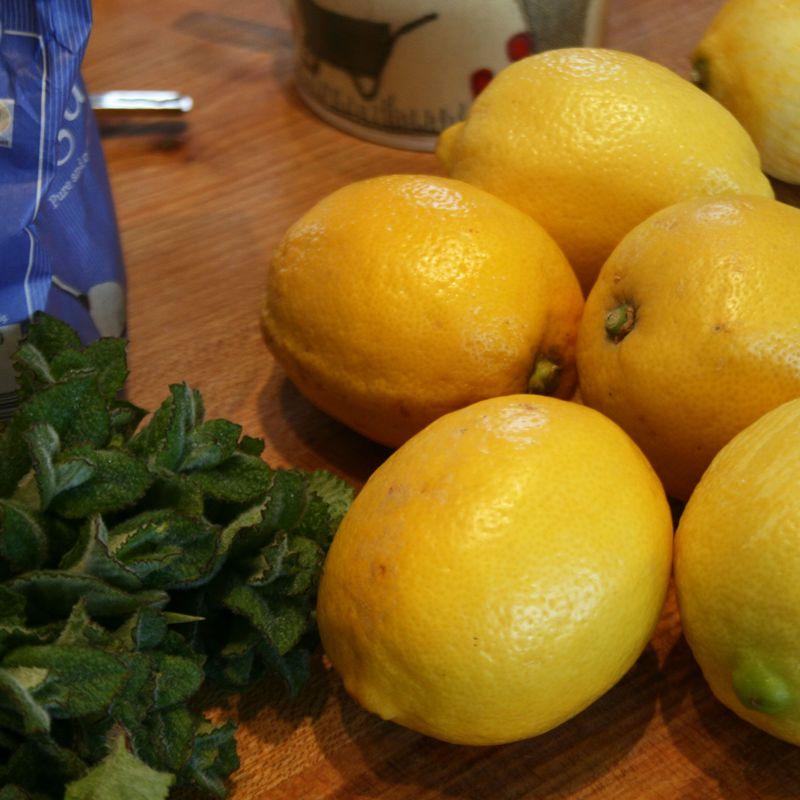 Newsletter-lemons