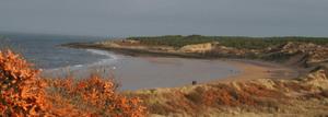 Gullane_beach