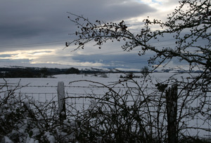 Snowy_fields_2
