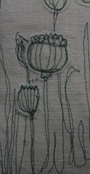 Poppyhead_crop