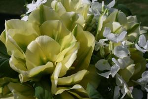 Spring_green_bouquet_3